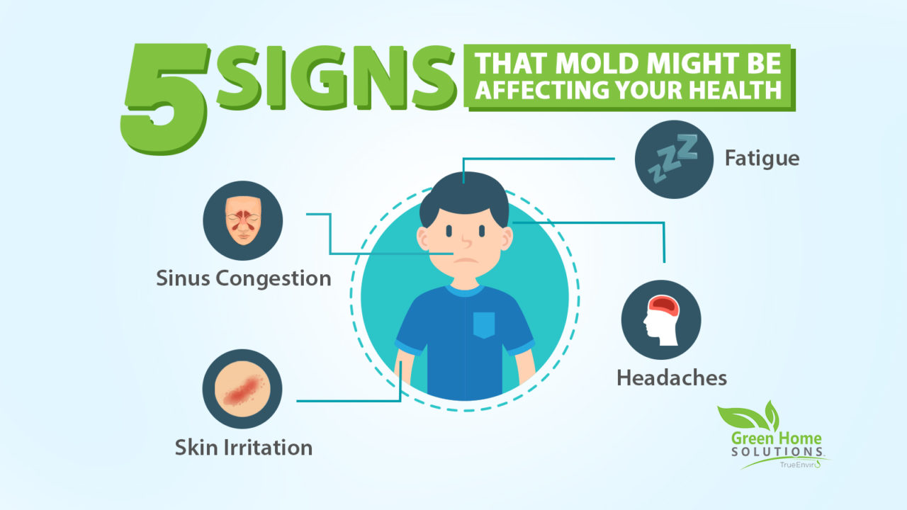 Perhaps Your Children Have Been Coughing Or Sneezing For An Extended Period Of Time This Could Mean You Mold Growing In